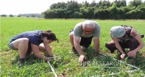 ORC elm farm researchers2