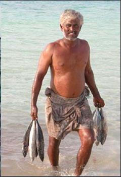 lakshadweep fish