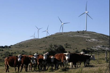 uruguay wind